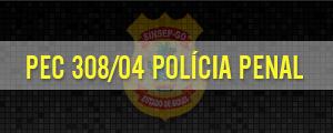 Photo of Visita Congresso Nacional – Polícia Penal